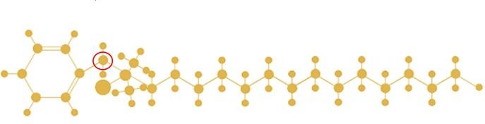 benzalkoniumchloride2.JPG
