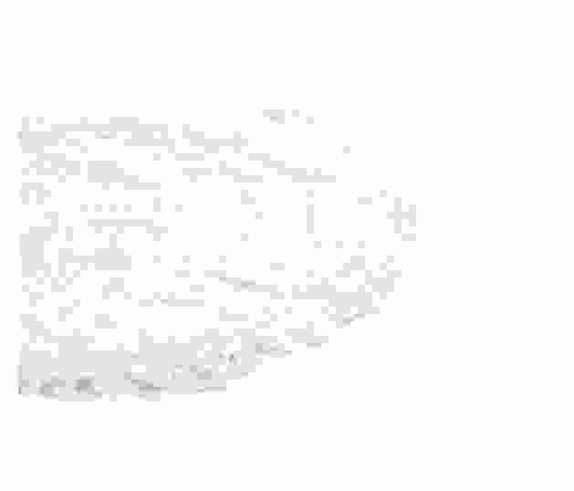 Bomullspad 2.jpg